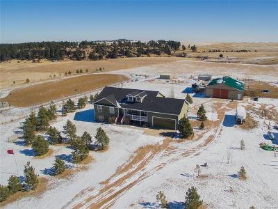 Elbert CO Single Family Home Active: $725,000