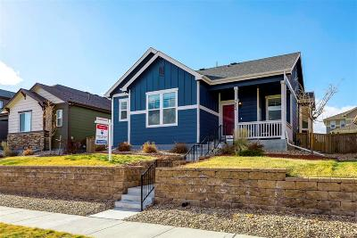 Castle Rock Single Family Home Under Contract: 3804 Shadow Circle