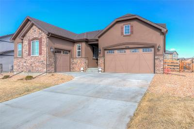 Arapahoe County Single Family Home Active: 21941 East Layton Drive