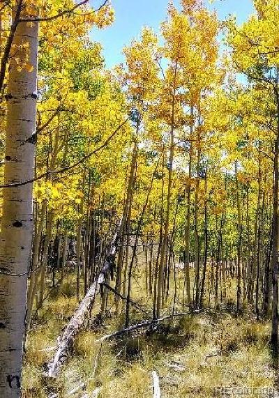 Como CO Residential Lots & Land Active: $35,000