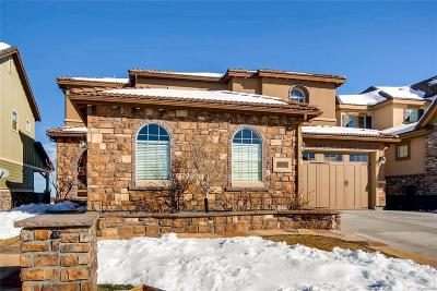 Highlands Ranch Single Family Home Active: 10624 Skydance Drive