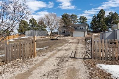 Elbert County Single Family Home Under Contract: 1125 Buttercup Road