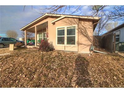Brighton, Henderson, Hudson, Lochbuie Single Family Home Active: 506 Prairie Avenue