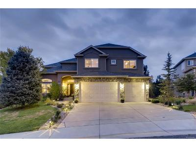Golden Single Family Home Active: 580 Eagle Nest Court
