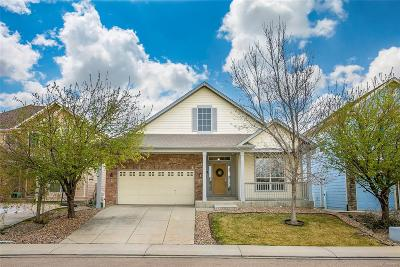 Longmont Single Family Home Active: 4604 Calabria Place