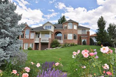 Niwot Single Family Home Under Contract: 8418 Greenwood Drive
