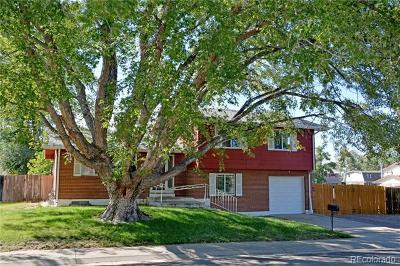 Denver Single Family Home Active: 4883 Tucson Street