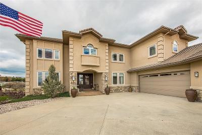 Castle Rock Single Family Home Active: 836 Diamond Ridge Circle
