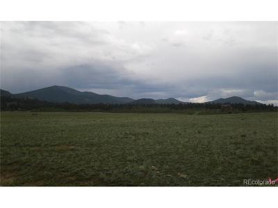 Hartsel Residential Lots & Land Active: 1632 Rocky Mountain Road