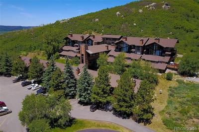 Steamboat Springs CO Condo/Townhouse Active: $259,000