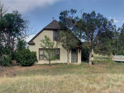 Elbert County Single Family Home Under Contract: 46560 Us Highway 24