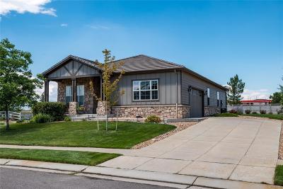 Broomfield Single Family Home Under Contract: 3629 Vestal Loop