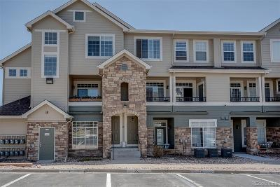 Castle Rock Condo/Townhouse Under Contract: 452 Black Feather Loop #619