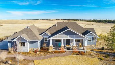 Elbert County Single Family Home Active: 541 Legacy Trail