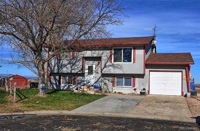 Single Family Home Active: 8109 Hallett Court