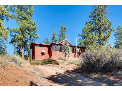 Pine Single Family Home Active: 23925 Hilltop Road