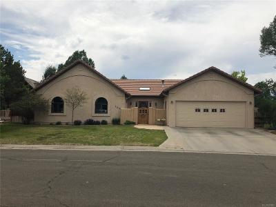Salida Single Family Home Active: 155 Mesa Circle