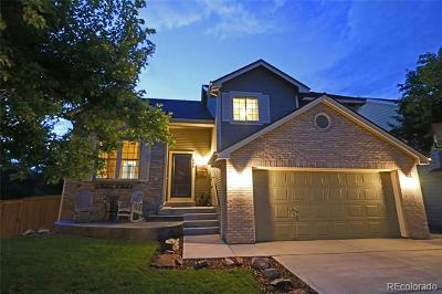 Westridge, Westridge Highlands Ranch Single Family Home Active: 396 Wessex Circle