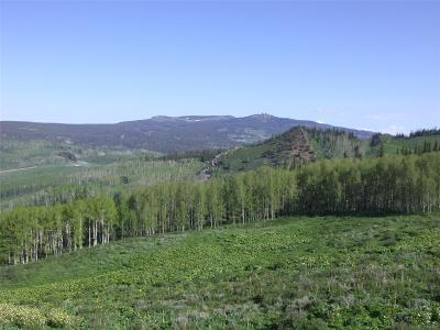 Residential Lots & Land Active: 469 Co Rd 284/Rabbit Ears Loop