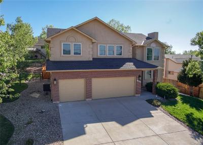 Colorado Springs Single Family Home Active: 1550 Bear Cloud Drive