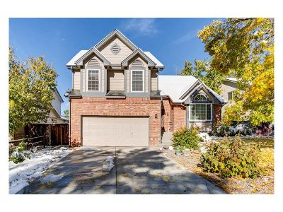 Highlands Ranch Single Family Home Active: 9399 Yale Lane