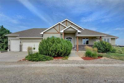 Loveland Single Family Home Active: 5505 East County Road 16
