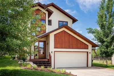 Steamboat Springs Single Family Home Active: 27377 Brandon Circle