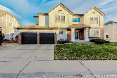 Arvada Single Family Home Active: 6704 Terry Court