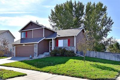 Henderson Single Family Home Active: 10620 East 113th Avenue