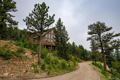 Evergreen Single Family Home Active: 538 Sawmill Creek Road