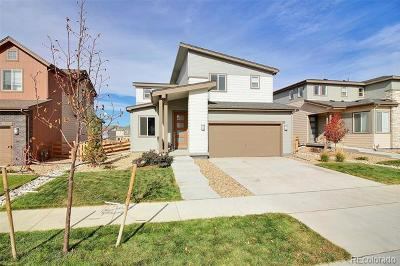 Reunion Single Family Home Active: 18047 East 107th Way