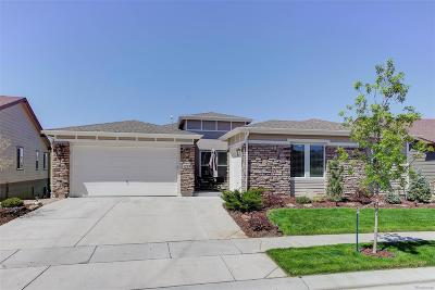 Skyestone Single Family Home Under Contract: 12351 Red Fox Way