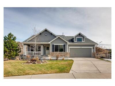 Castle Rock Single Family Home Active: 3042 Mountain Sky Drive