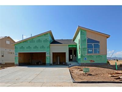 Littleton Single Family Home Active: 7950 Piney River Avenue