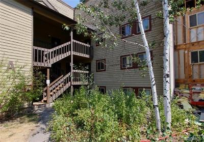 Steamboat Springs Condo/Townhouse Active: 1525 Shadow Run Frontage #206