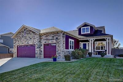 Castle Rock Single Family Home Active: 6938 Winthrop Circle