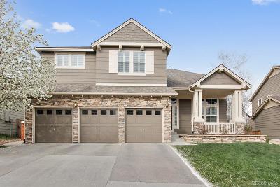 Meadows, The Meadows Single Family Home Under Contract: 3873 Sunridge Terrace Drive