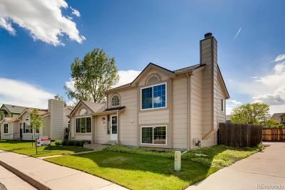 Castle Rock Single Family Home Active: 97 Quicksilver Avenue