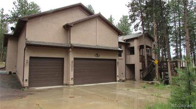 Woodland Park Single Family Home Active: 1020 Parkway Lane