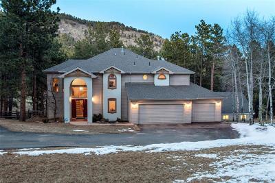 Evergreen Single Family Home Active: 46 Greystone Trail