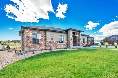 Castle Rock CO Single Family Home Active: $824,500