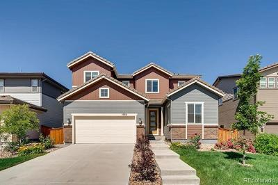 Parker Single Family Home Active: 10934 Touchstone Loop