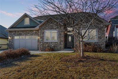 Greeley Single Family Home Active: 3309 67th Avenue Place