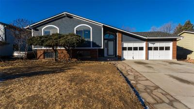 Colorado Springs Single Family Home Active: 6628 Gambol Quail Drive
