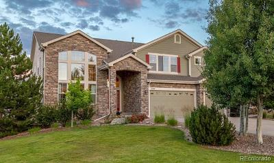 Parker Single Family Home Active: 4780 Nighthorse Court