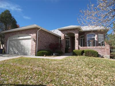 Highlands Ranch Single Family Home Under Contract: 13 Birmingham Court