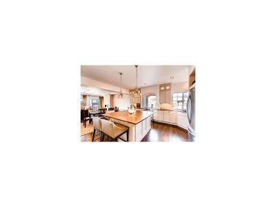 Castle Rock CO Single Family Home Active: $539,000