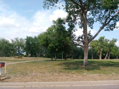 Superior Residential Lots & Land Active: 401 South 3rd Avenue