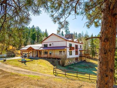 Conifer Single Family Home Under Contract: 31301 Red Hawk Trail