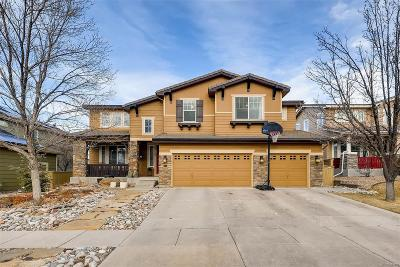 Stonebury Single Family Home Under Contract: 604 Ridgemont Circle